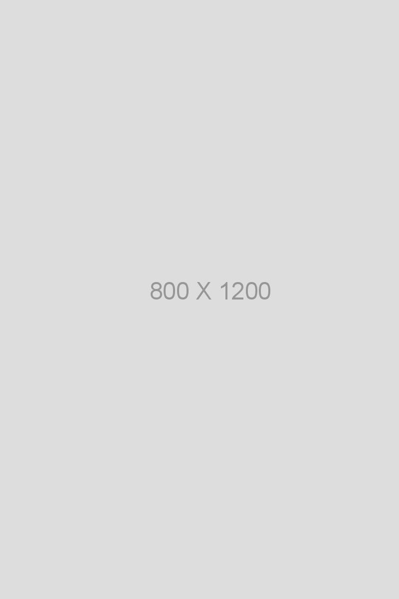 Portfolio item 20